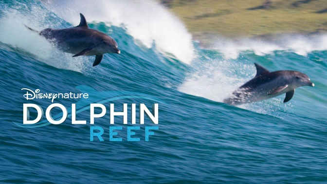 Dolphin-Reef Os filmes originais Disney+ classificados do pior ao melhor