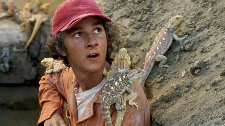 O-Mistério-dos-Escavadores Os 30 melhores filmes no Disney+ fora dos universos Star Wars e Marvel