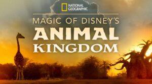 A Magia do Animal Kingdom Disney Plus