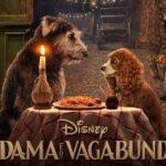 """Disney divulga pôster em português de """"A Dama e o Vagabundo"""" e confirma data do filme no Brasil"""