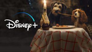 Filmes-com-Cachorros-Disney-Plus