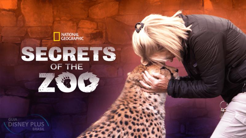 """Os-Segredos-do-Zoologico Confira os Lançamentos de Hoje no Disney+, incluindo """"O Grande Ivan"""""""