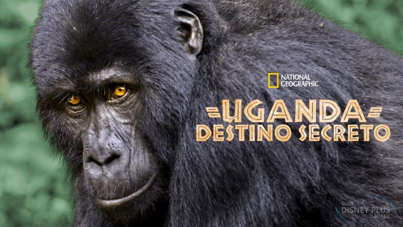 """Uganda-Destino-Secreto Confira os Lançamentos de Hoje no Disney+, incluindo """"O Grande Ivan"""""""
