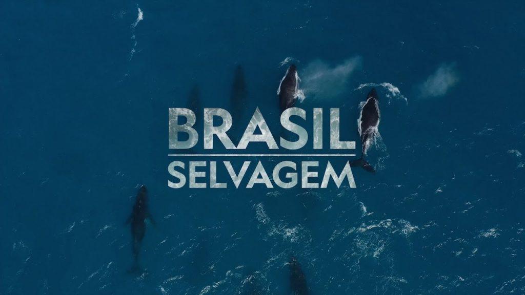 Brasil-Selvagem-National-Geographic-Disney-Plus-1024x576 Veja as Estreias da Semana no Disney+, incluindo 'Flora e Ulysses' e 'Bia: Um Mundo do Avesso'