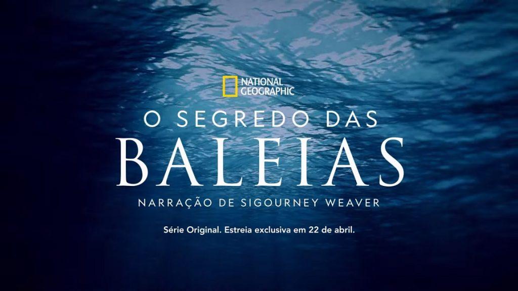 O-Segredo-das-Baleias-Disney-Plus-1024x576 O Segredo das Baleias Estreia no Dia da Terra no Disney+, Confira o Trailer