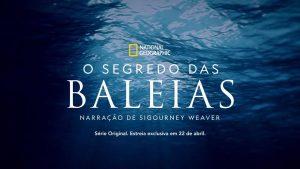 O-Segredo-das-Baleias-Disney-Plus