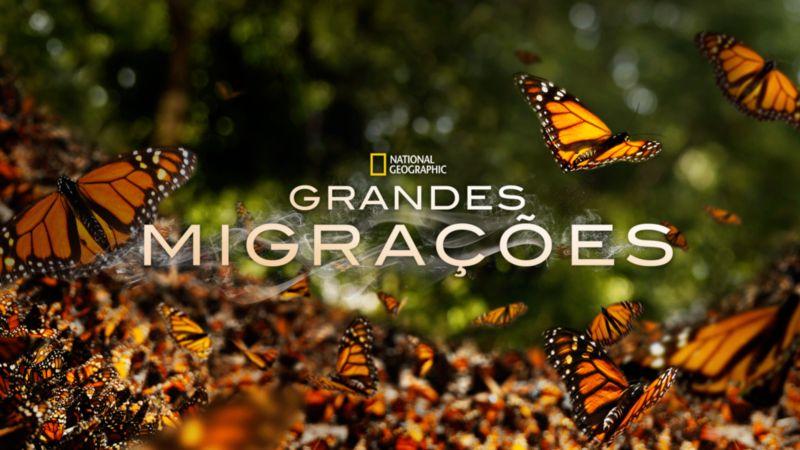 Grandes-Migracoes-Disney-Plus Lançamentos do Disney+ em Maio: Lista Completa e Atualizada