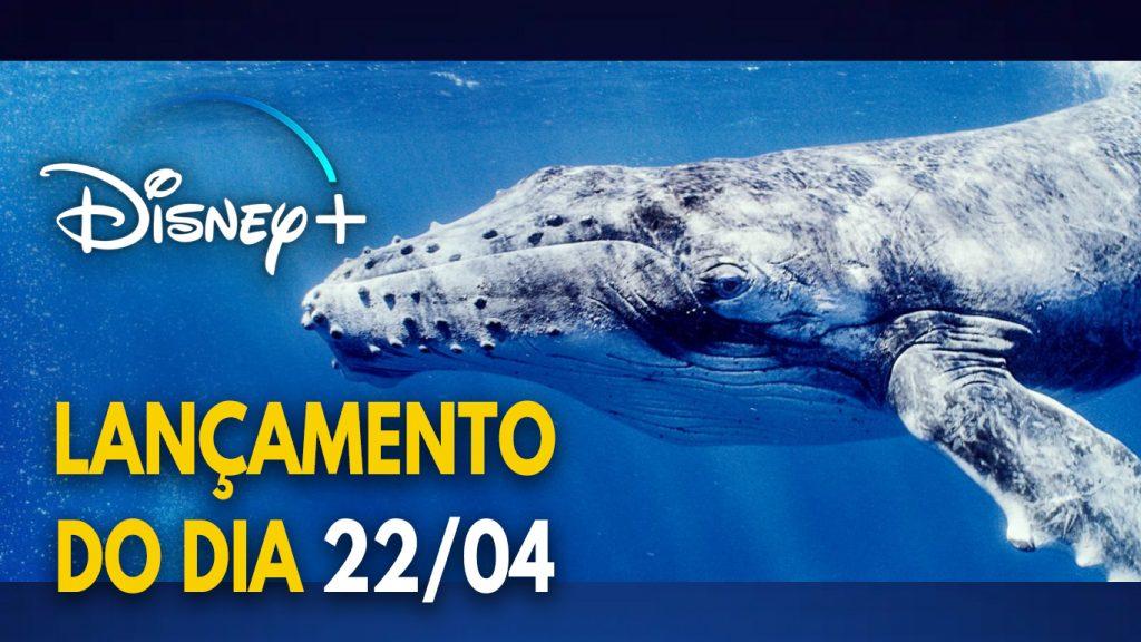 Lancamento-do-dia-22-04-21-Disney-Plus-1-1024x576 Lançamento do Dia da Terra no Disney+: O Segredo das Baleias