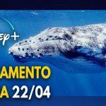 Lançamento do Dia da Terra no Disney+: O Segredo das Baleias