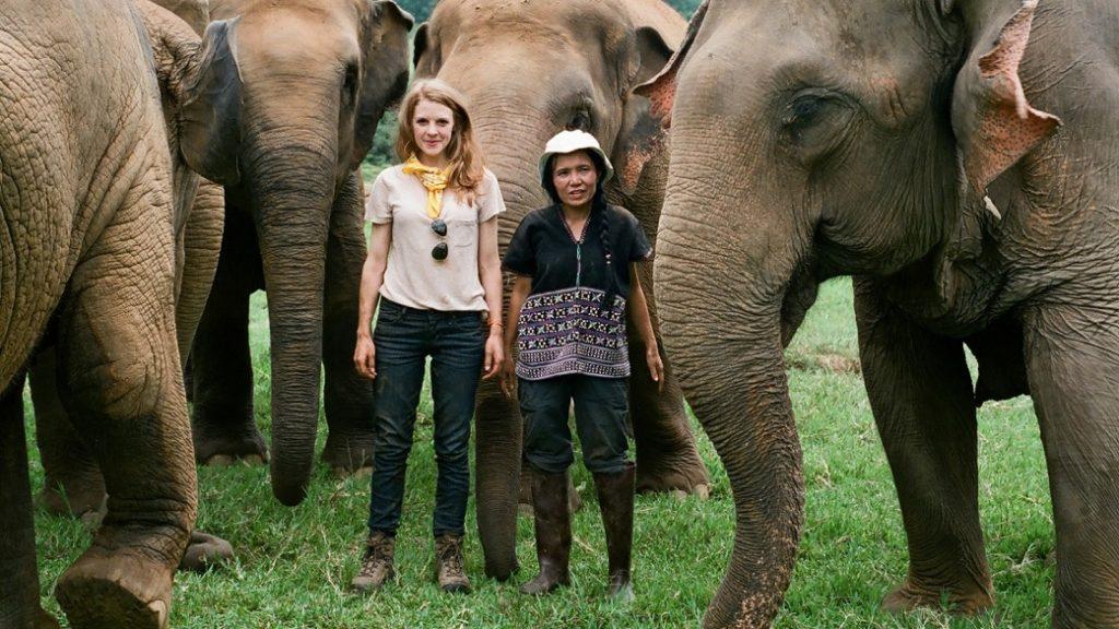 Elefantes-Em-Nome-da-Liberdade-Disney-Plus-1024x576 Lançamentos do Disney+ na Semana, Incluindo Novidades do Star Wars Day