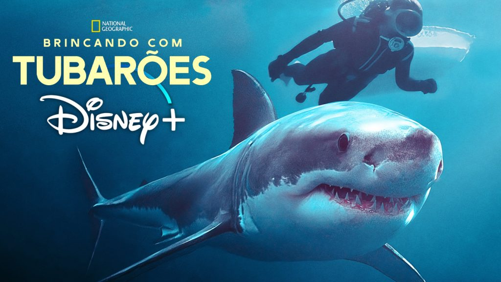 Brincando-com-Tubaroes-Valerie-Taylor-1024x576 Brincando com Tubarões: Conheça a mulher que é o Spielberg dos tubarões na vida real!