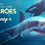 Brincando com Tubarões: Conheça a mulher que é o Spielberg dos tubarões na vida real!